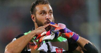 Iran goalkeeper